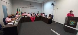 Sessão Ordinária homenageia o Outubro Rosa