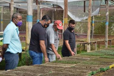 Vereadores visitam produtores orgânicos para avaliar danos nas plantações